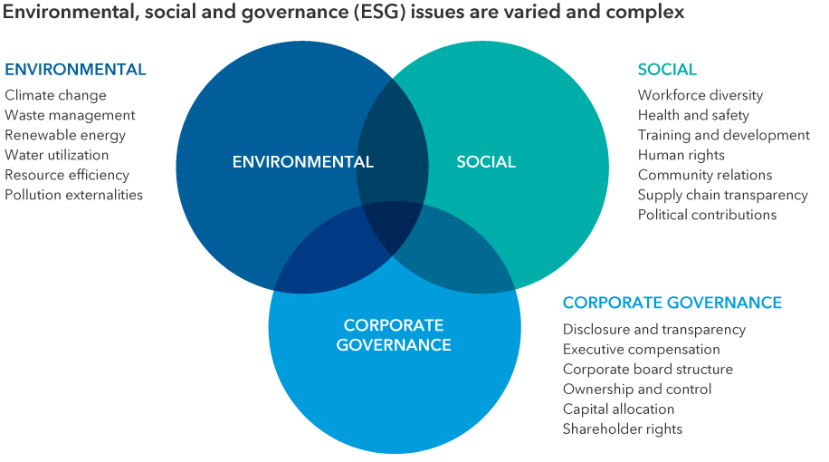 The chart shows a Venn diagram of the three main categories of ESG: environmental, social and corporate governance. Each category lists examples of factors commonly screened for in ESG investing. Under environmental, examples include climate change, waste management, renewable energy, water utilization, resource efficiency and pollution externalities. Under social, examples include workforce diversity, health and safety, training and development, human rights, community relations, supply chain transparency and political contributions. Under corporate governance, examples include disclosure and transparency, executive compensation, corporate board structure, ownership and control, capital allocation and shareholder rights.