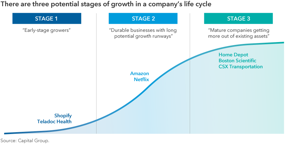 Chart-growth-stages-916x462